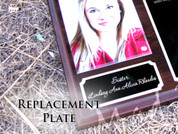 Replacement Plate - Small