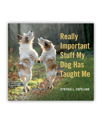 Really Important Stuff My Dog Has Taught Me Book