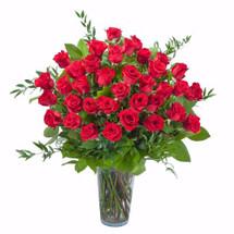 Room Full of Roses