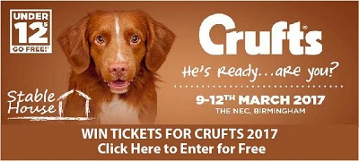 crufts-comp-header-ai-small.jpg