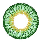 Design detail on GEO Twins Green YH303 circle lens.