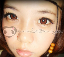 Xtra Bella Brown WBS204 Brown circle lenses