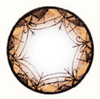 Circle lens design detail, Geo Xtra Ribbon WTB94 Brown.