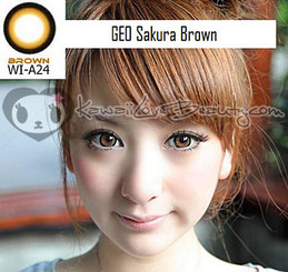 Geo Sakura Brown WIA24 circle lenses on model.