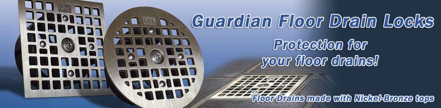 guardian-d-lock-banner2b.jpg
