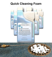 QuickClean Foam L (case of 6)