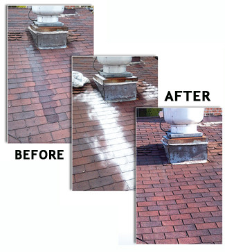 Grease Away Rooftop grease neutralizer