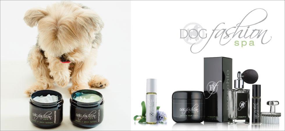 dog grooming fashion spa