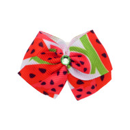 Watermelon Dog Hair Bow