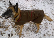 NY Sport Dog Coat | Chocolate