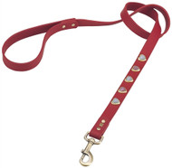 Heart Dog Leash | 2 Colors