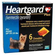 Amazon.com: heartgard plus: Pet Supplies