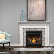Napoleon Ascent™ 35 – B35 Direct Vent Gas Fireplace