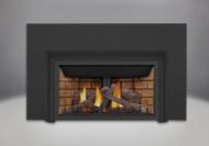 Napoleon Inspiration™ ZC - GDIZC-NSB Gas Fireplace Insert
