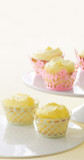 Martha Stewart Pastel Die Cut Cupcake Wrap