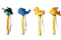 Novelty Animal Pool Thermometers