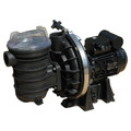 Sta Rite 5P2R Pool Pump
