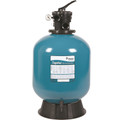 Tagelus Pool Filter with Top Mount Valve