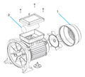 Buy Spare Parts For Sta-Rite Swimmey Pump Motor