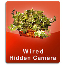 Silk Plant Wired Series Hidden Nanny Camera  -  PLANT-WIRED