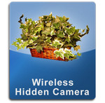 Plant Wireless 1000 Hidden Spy Cameras  -  PLANT-1000