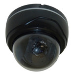 Color Indoor High Res Security Camera Dome