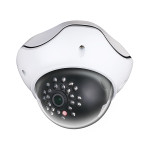 NVR System Camera Style C - Color Switching Outdoor Megapixel IP Dome Style Security Camera