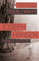 Troublemaker (Brandstetter Mystery #3)
