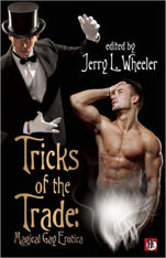 Tricks of the Trade : Magical Gay Erotica (Bold Strokes Sale Erotica)