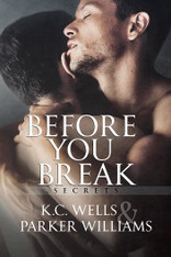 Before You Break (Secrets Series #1)