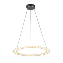 Zen Ring LED Pendant Light