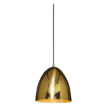 Egg Brass Pendant Light