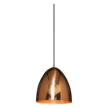 Egg Copper Pendant Light