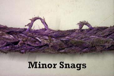 minor-snags.jpg