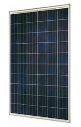 SolarWorld 250w Poly Pro-Series Module 31mm