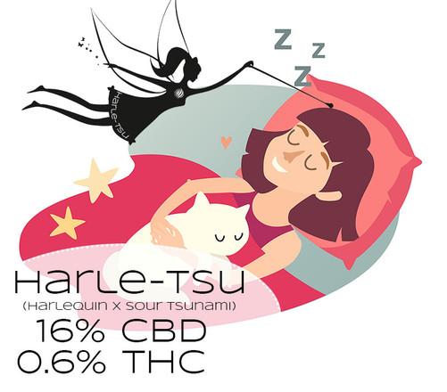 The Big To-Do About Harle-Tsu