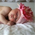 Pale Pink Peony Baby Hat