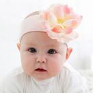 pale Pink Rose Headband