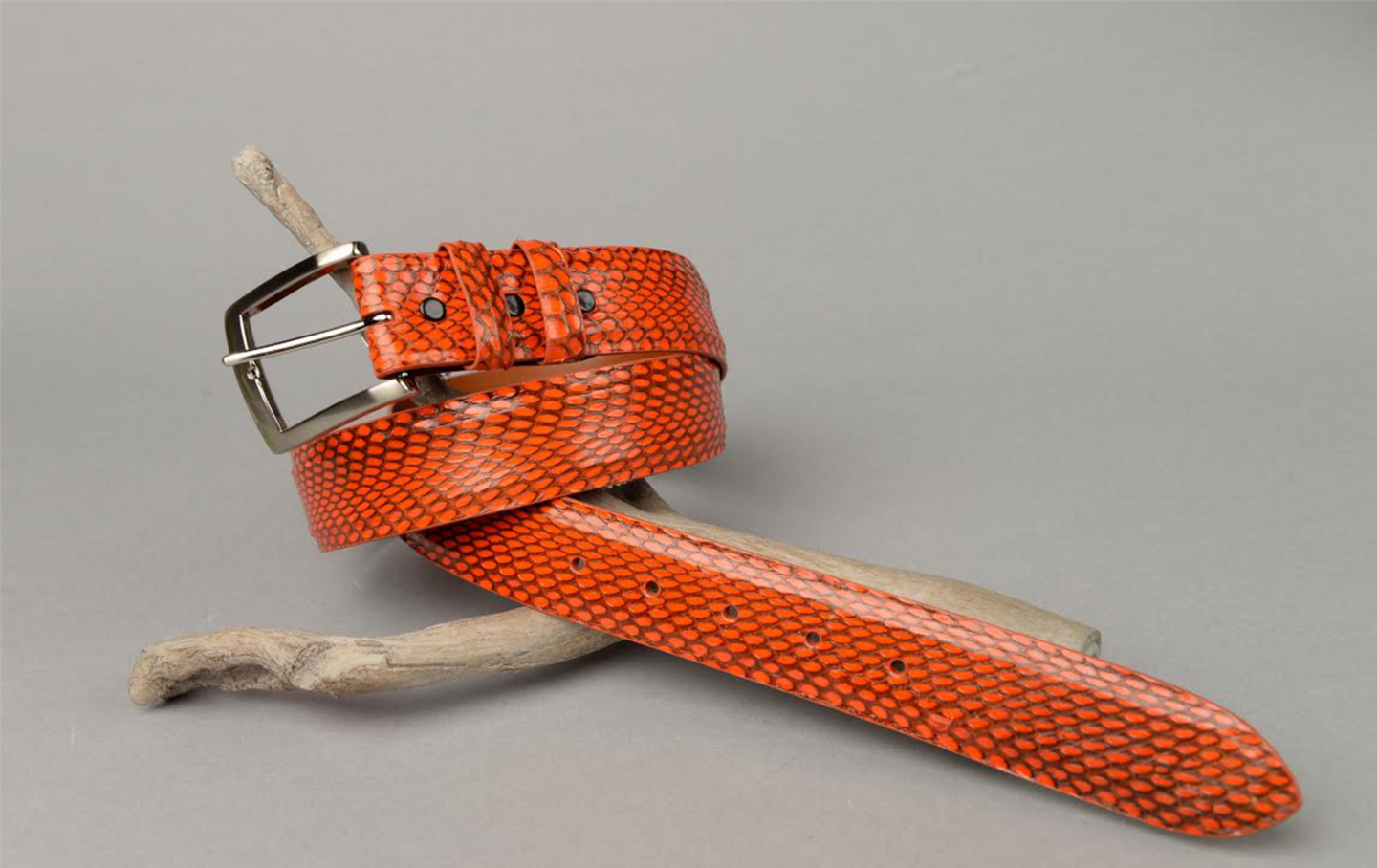 Blood Orange Spitting Cobra Belt shown with No Stitching.