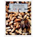 Observation Hives by Caron & Webster