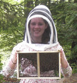 2015 Package Bees: 3 lbs. w/ Carniolan Queen (Deposit / Reservation)