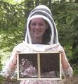 2017 Package Bees: 3 lbs. w/ Carniolan Queen DEPOSIT