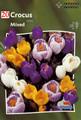 Crocus mixed colors 20_bulbs