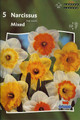 Narcis Mixed colors 5_bulbs