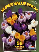 Crocus mixed 50_bulbs