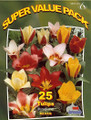 Tulips botanical mix 25_bulbs