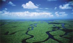 Everglades Eco-safari-tours