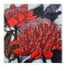 red waratah: 605mm x 605mm (printed image size 525mm x 525mm)