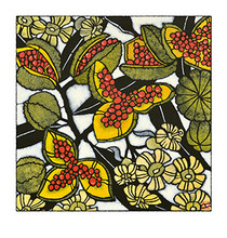 pittosporum archival print