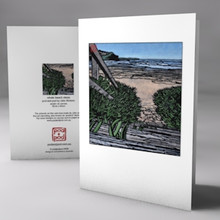 whale beach steps card